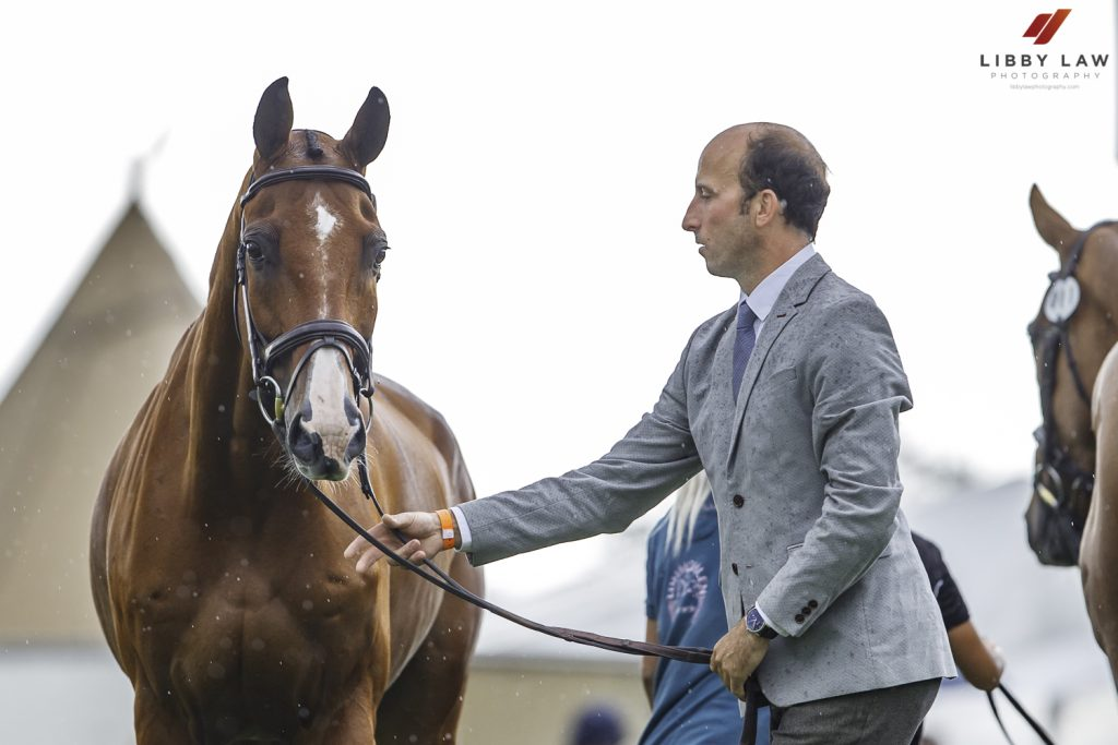 Burghley Trot Up