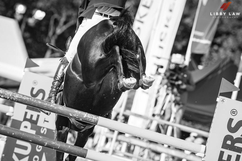 Horse and Riders reunited at WEG